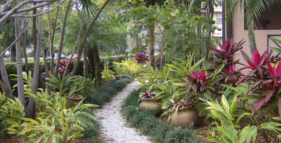 Landscaping tampa properties for over 28 years call 813 for Bay area landscape design