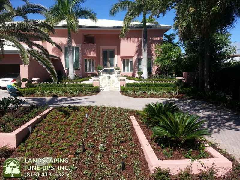 Tampa landscape design improvements for existing yards for Landscape design tampa