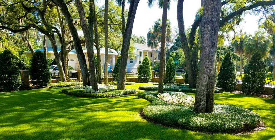 Landscaping tampa properties for over 28 years call 813 for Landscape design tampa