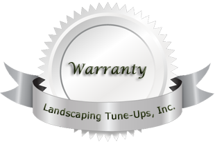 Landscaper Tampa Landscaping Tune-Ups Warranty