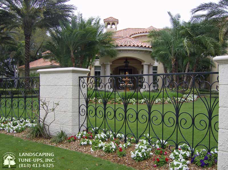 Tampa Landscaping Companies LTU Design and Install Appropriate Flowers and Plants for Your New Home - (813) 413-6325