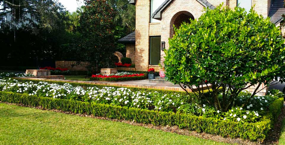 Tampa Landscaping Design