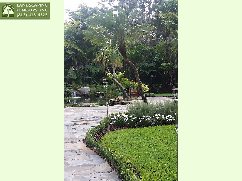 Best Landscaping Design Tampa FL