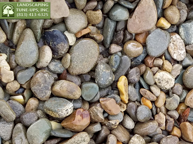 Landscaping Design Ideas Tampa with Gray Stones