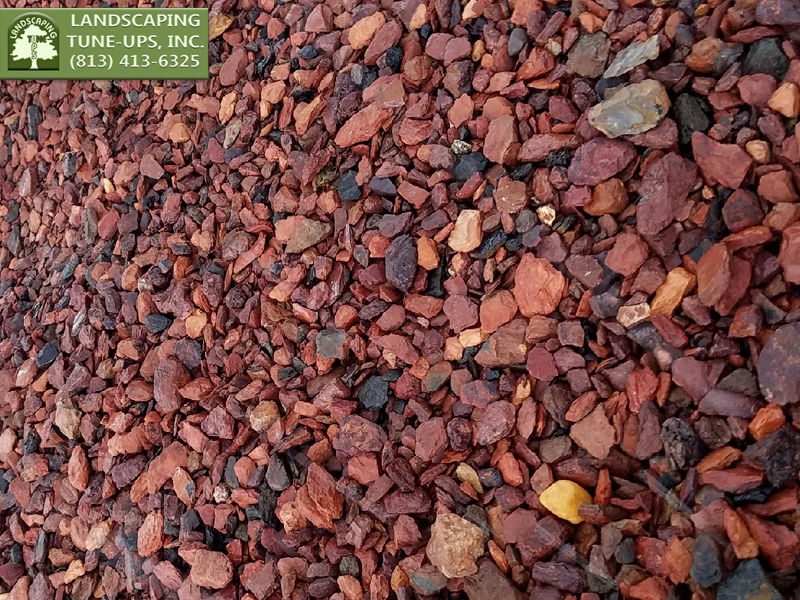 Landscaping Tampa Ideas with Red Pebbles