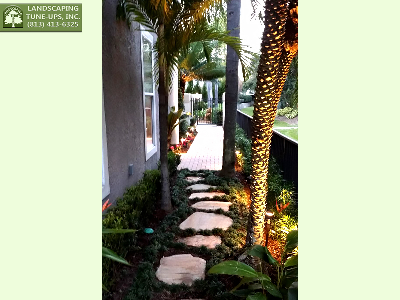 New Home Landscaping Ideas Tampa FL