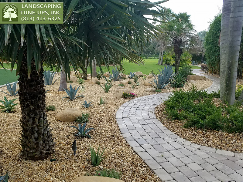 New Home Landscaping Tampa FL