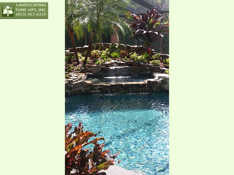 Tampa Landscaping Design Thomas Uzdavinis