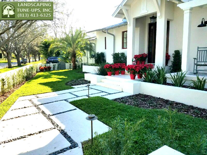 Landscape Design Tampa