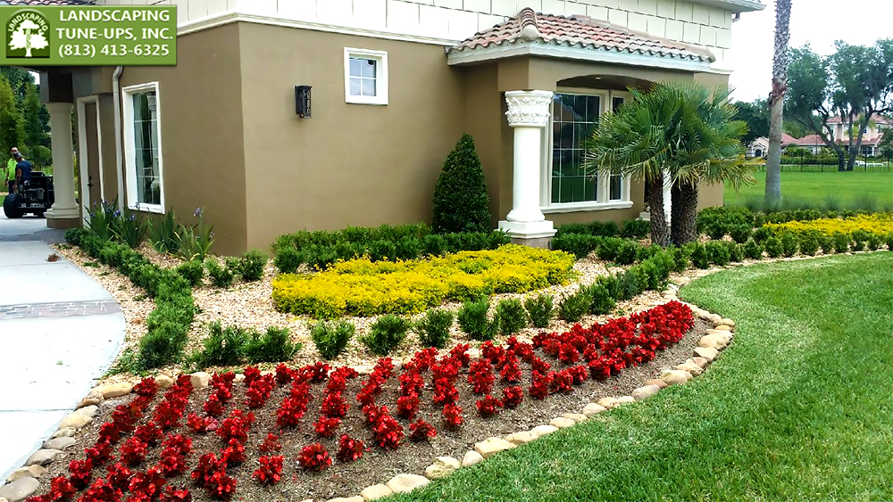 Residential Landscaping Company Tampa FL